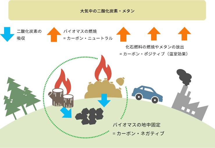 炭素循環のイメージ