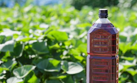 木酢液(害虫避け、口蹄疫対策、肥料補助剤)